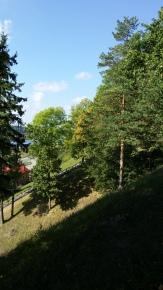 Veliuonos piliakalnis
