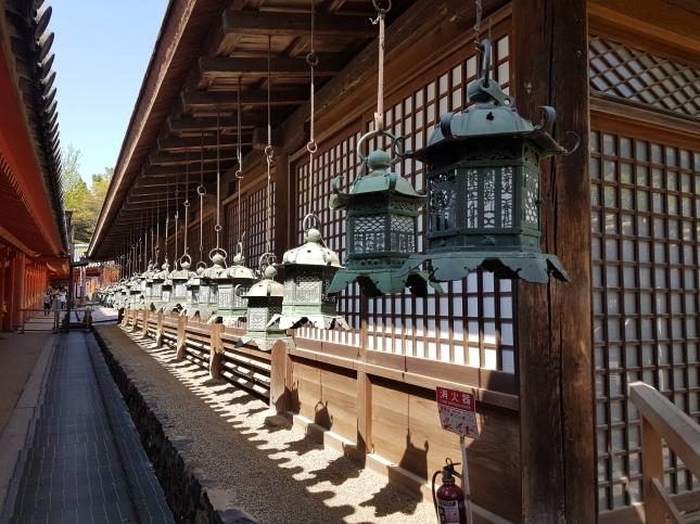Japonija_Nara